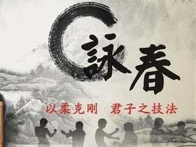 2020佛山-無極詠春宣传视频